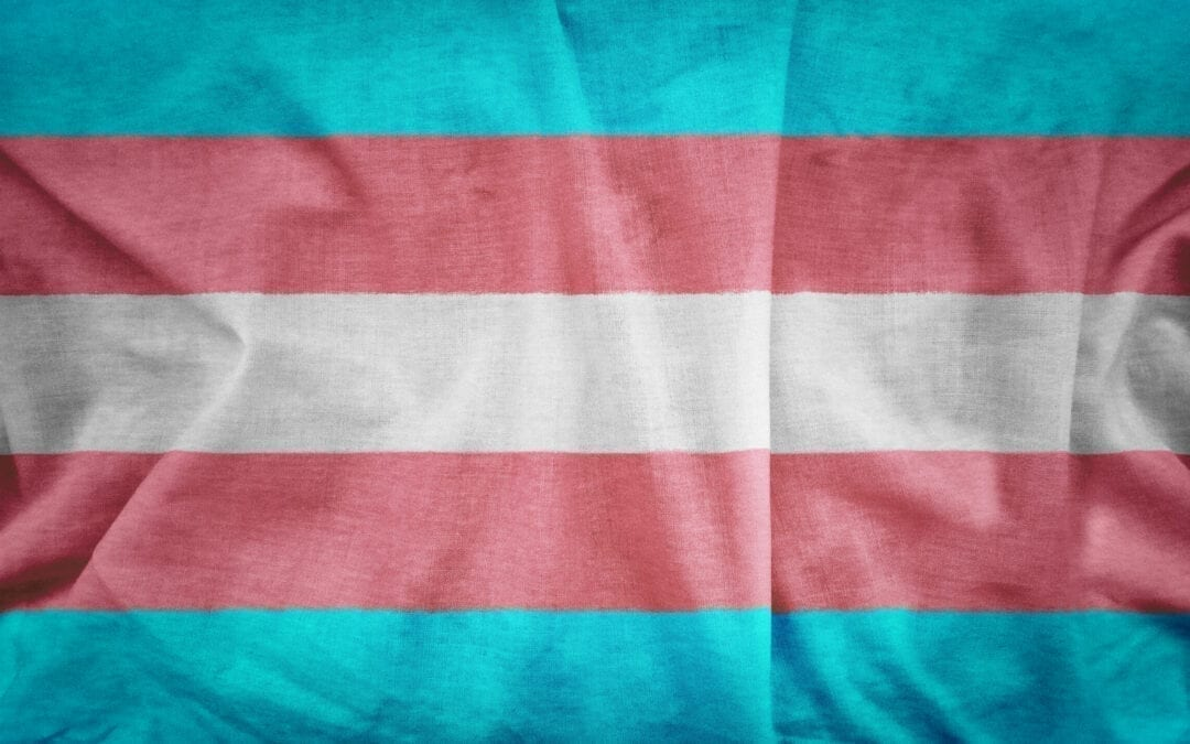 Trans workers' rights are human rights: Building trans inclusive workplaces